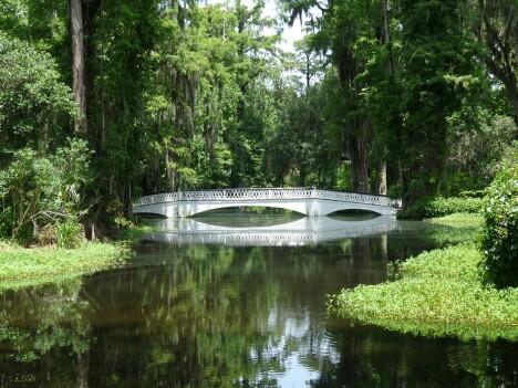 Plantation Reflecting Pond