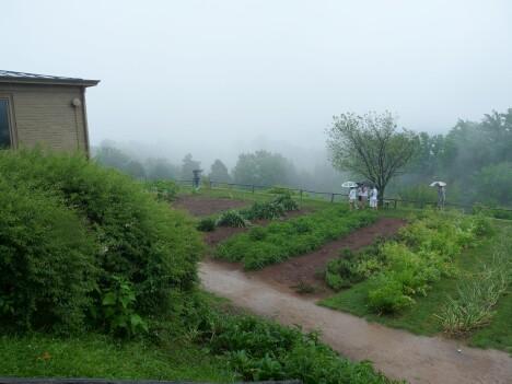 Monticello Gardens 2