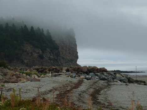Fundy Bluffs
