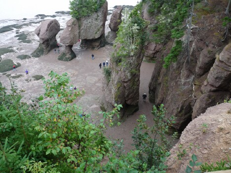 Hopewell Rocks Low