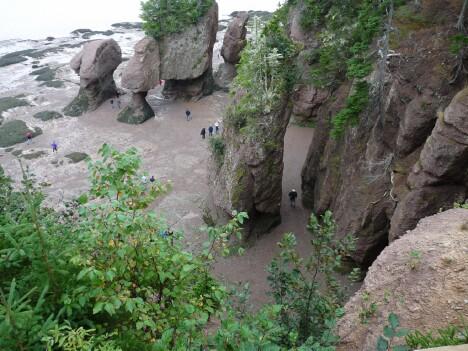 Hopewell Rocks Low
