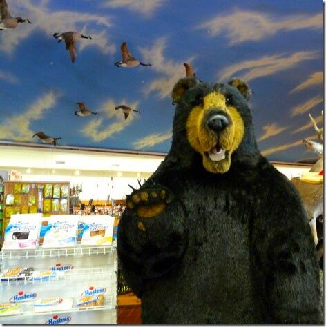 Lunker Bear