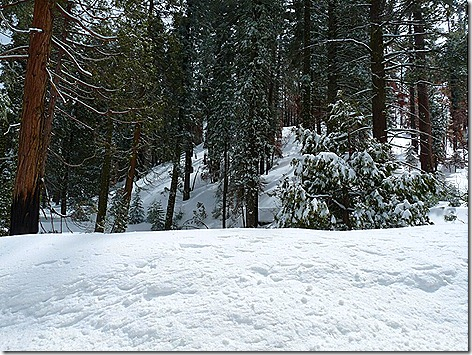 SnowPile 2
