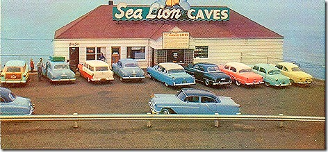 Sea_Lion_Caves_in_the_Mid_1950's