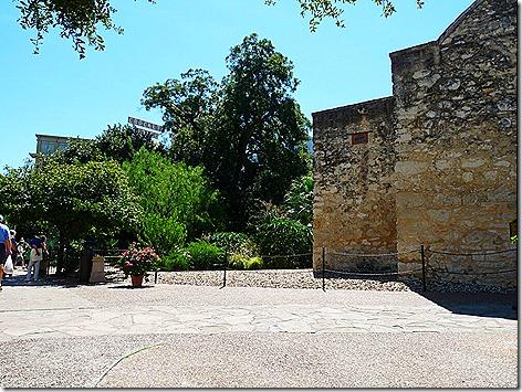 Alamo 5