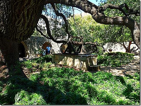 Alamo Well