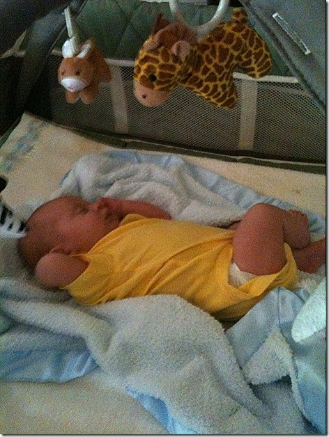 Landon in Yellow