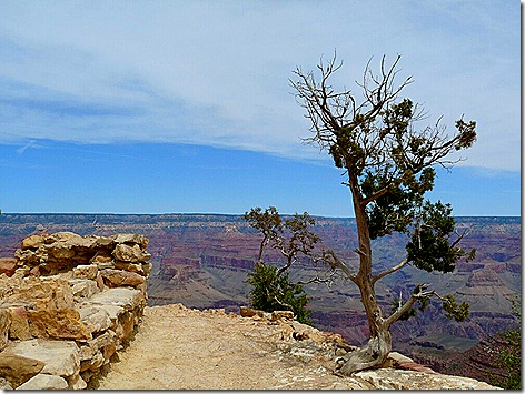 Canyon Lookout 2