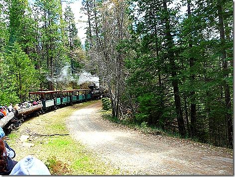 Sugar Pine Train 1