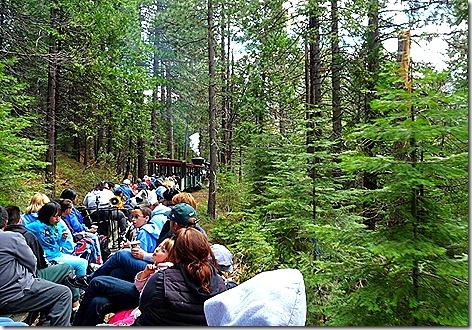 Sugar Pine Train 2