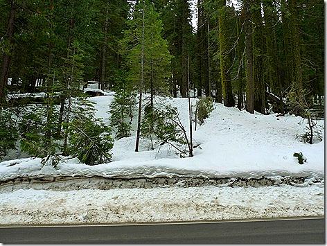 Yosemite Snow Drive 2