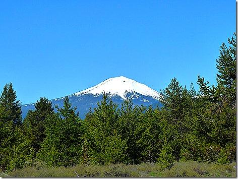 Mt Scott