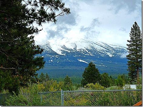 Mt Shasta - Park