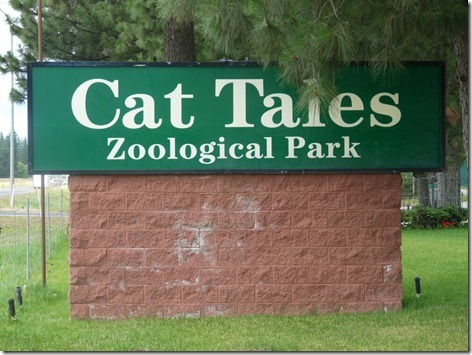 Cat Tails Sign