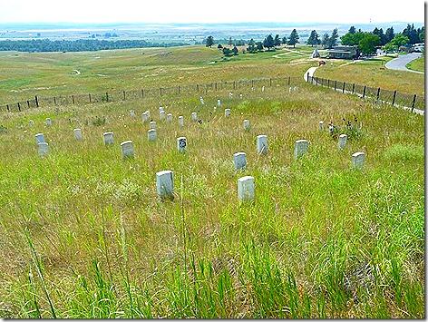 Custer 2011
