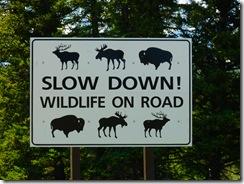 GTNP Wildlife Sign