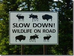 GTNP Wildlife Sign