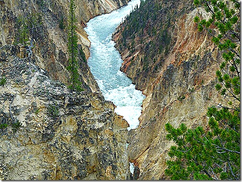 Yellowstone Lower Falls 3