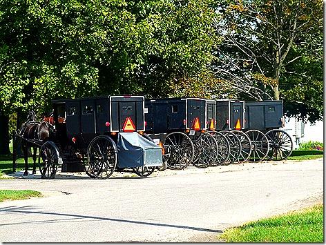 Amish Picnic