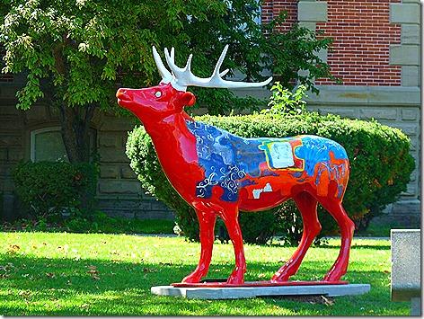 Elkhart Elk 3