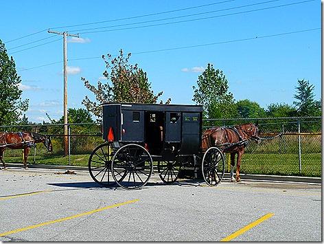Goshen Amish 2