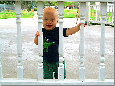 Landon on Park Railing