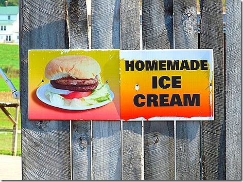 Homemade Ice Cream 1