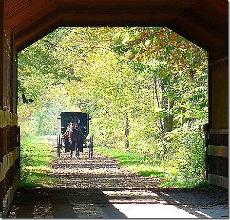 Ohio Covered Bridge 3