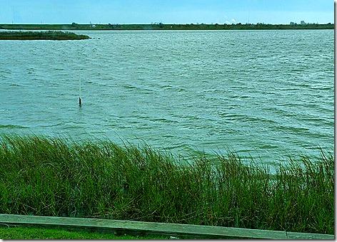 Galveston Bay 77-1