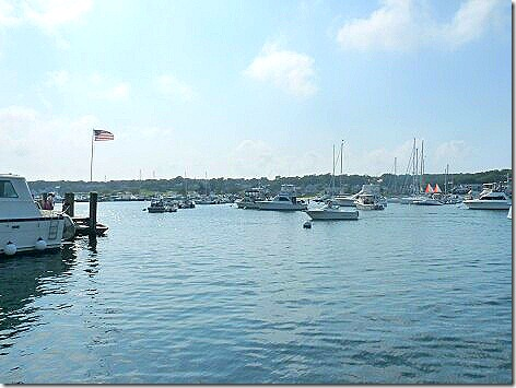 Oaks Bluff Harbor