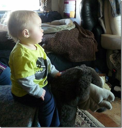 Landon on Moose