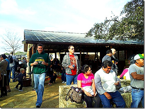 Salt Lick Crowd 2