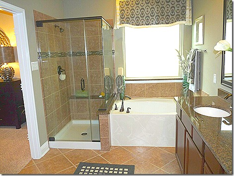 New House - Master Bath