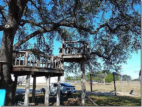 Landon on Gina's Treehouse 1