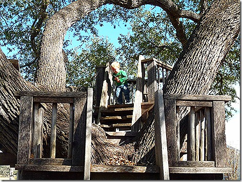 Landon on Gina's Treehouse 2