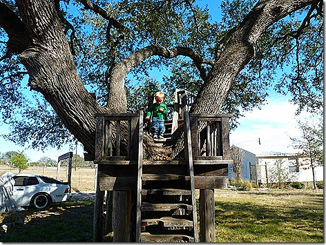 Landon on Gina's Treehouse 3