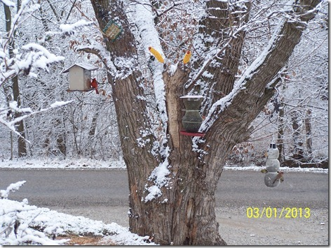 Debbie's Bird Feeder 2