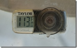 113 Thermometer