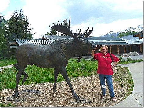 Jackson Jan Moose Statue