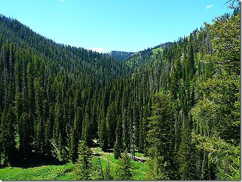 Teton Pass 1