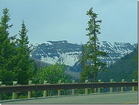 Yellowstone Trip 5