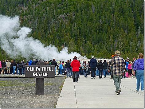 Yellowstone Trip 8