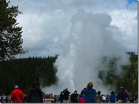 Yellowstone Trip 9