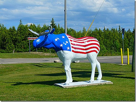 Mackinac Island Star Spangled Moose