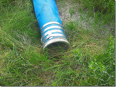 Whitsett Water Hose 3