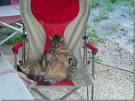 Mister Outside in Chair