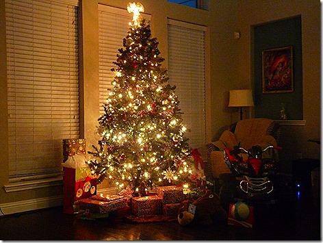 Christmast 2013 1