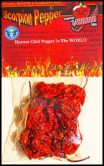 Trinidad Scorpion Package