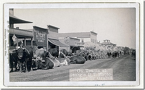 Title: Ox teams at Sturgis, D.T. [i.e. Dakota Territory]Line of oxen and wagons along main street. [between 1887 and 1892]Repository: Library of Congress Prints and Photographs Division Washington, D.C. 20540