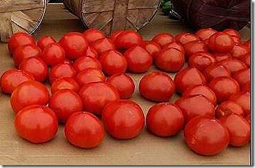 E & S Tomatoes
